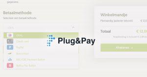 Plug & Pay betaalpagina's - review