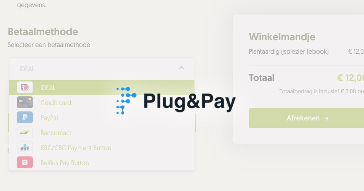 Plug & Pay betaalpagina's - review